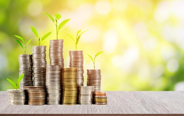 Jungpflanzen auf münzen stapeln auf hölzerner tabelle mit schönem unscharfem grünem natur- und sonnenlichthintergrund Premium Fotos