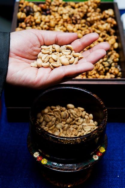 Kaffeebohnen aus der zibetkatze. Premium Fotos