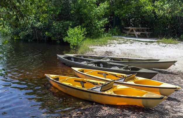 Kajaks für das paddeln in den mangroventunneln im nationalpark der sumpfgebiete, florida, usa Premium Fotos