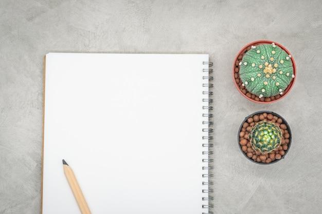 Kaktus, notizbuch und bleistift auf dem bürotisch, grauer konkreter hintergrund, flache lage Premium Fotos
