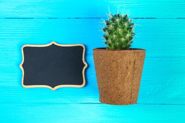 Kaktus vor klassenzimmer-kreidetafel. zurück zu schulkonzept mit kopienraum. Premium Fotos