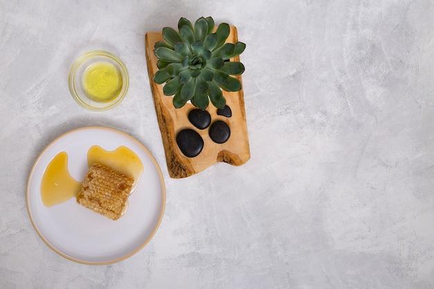 Kaktuspflanze und lastone auf hölzernem brett mit öl und bienenwabe über dem konkreten hintergrund Kostenlose Fotos