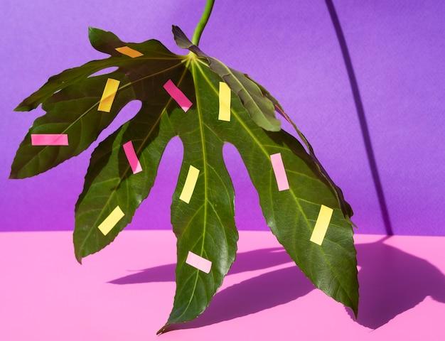 Kastanienblattanordnung mit briefpapierfeldern Kostenlose Fotos