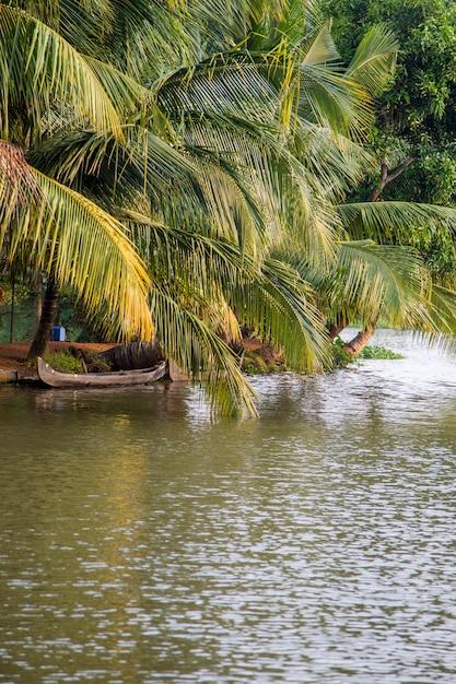 Kerala, indien Premium Fotos