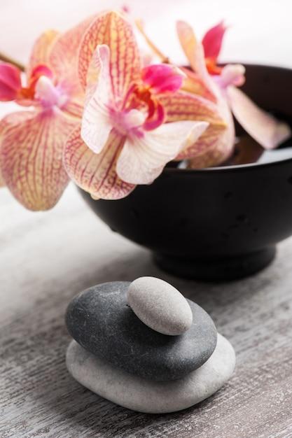 Kiesel im wasser und in der roten orange orchidee Premium Fotos