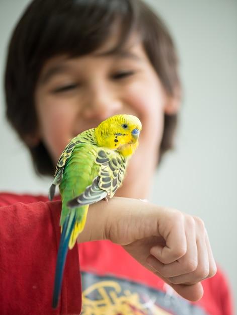 Kind, das mit seinem haustierpapageien spielt Premium Fotos