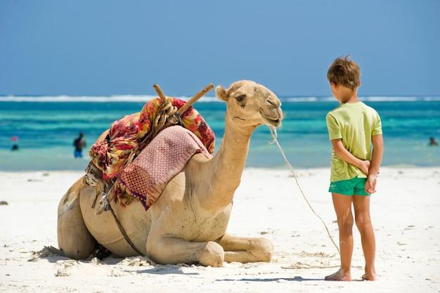 Kind und ein kamel am strand Premium Fotos