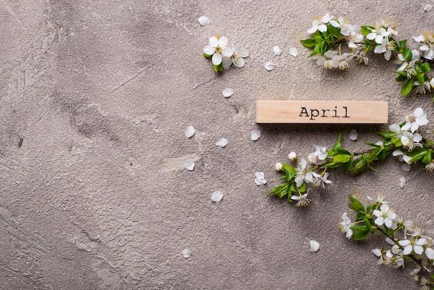 Kirschblüte auf beige hintergrund Premium Fotos