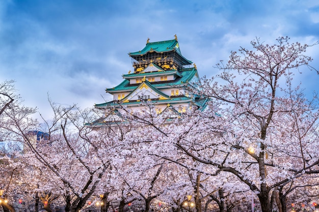 Kirschblüten und schloss in osaka, japan. Kostenlose Fotos
