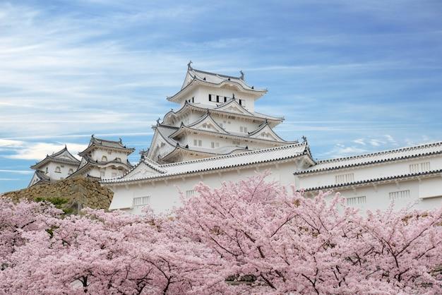 Kirschblütenblumen und himeji-schloss in himeji, hyogo, japan Premium Fotos