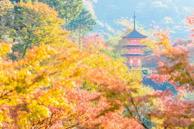 Kiyomizu deratempel in kyoto bei japan Kostenlose Fotos