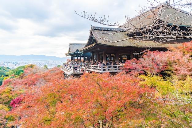 Kiyomizu- oder kiyomizu-deratempel in der herbstsaison in kyoto. Premium Fotos