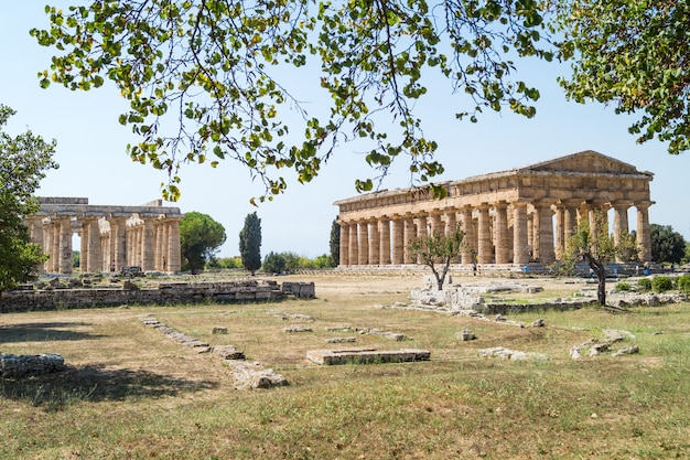 Klassischer griechischer tempel an den ruinen der alten stadt paestum, italien Premium Fotos