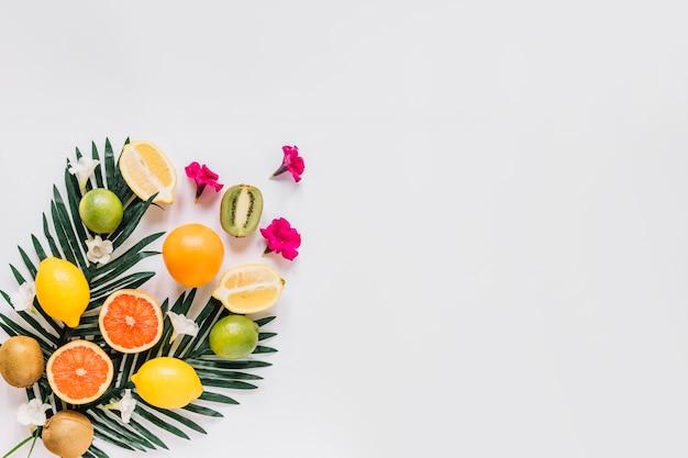 Kleine blumen in der nähe von zitrusfrüchten und blättern Kostenlose Fotos
