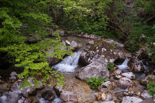 Kleiner bach in slowenien Premium Fotos