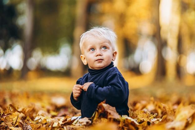 Kleiner junge, der spaß draußen im park hat Premium Fotos