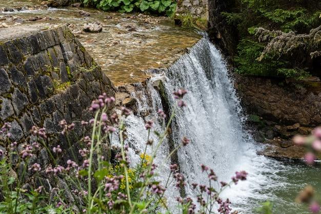 Kleiner wasserfall in den bucegi bergen, rumänien Premium Fotos