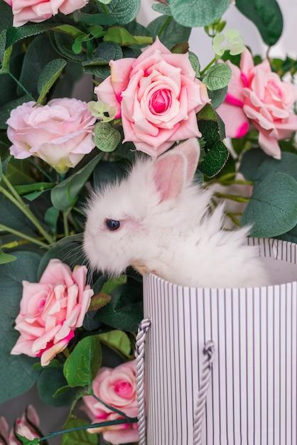 Kleines kaninchen in einem korb auf einem hintergrund von blumen. flauschiger osterhase Premium Fotos