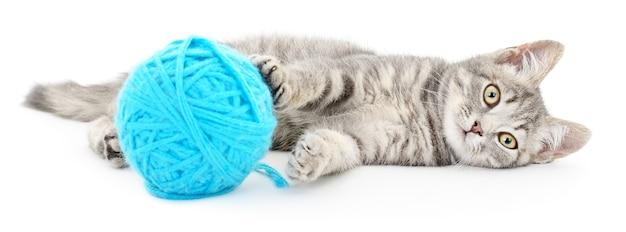 Kleines lustiges kätzchen und fadenschlaufe. auf weiß isoliert Premium Fotos