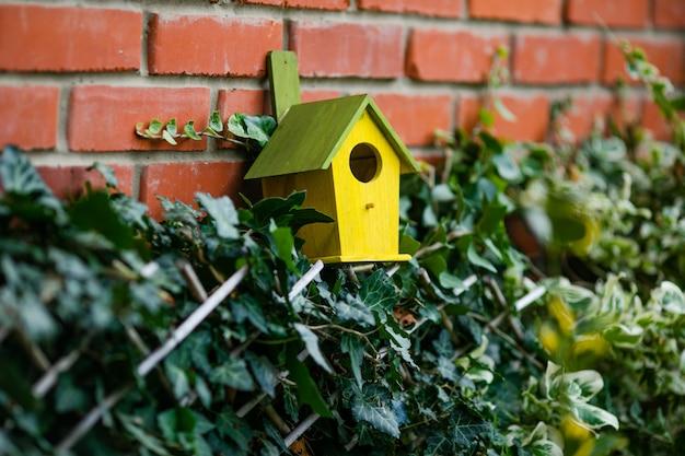 Kleines vogelhaus in einem baum Premium Fotos