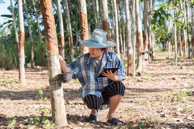 Kluger landwirt landwirt gummibaumplantage Premium Fotos