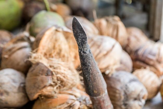 Kokosnüsse auf dem markt Premium Fotos