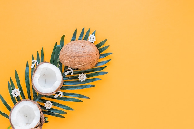 Kokosnüsse auf großem grünem palmblatt Kostenlose Fotos