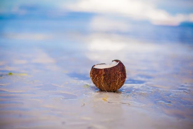 Kokosnuss auf tropischem weißem sandstrand an einem sonnigen tag Premium Fotos