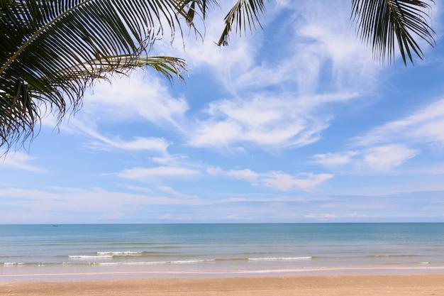 Kokosnussbäume gegen blauen himmel. palmen an der tropischen küste. Premium Fotos