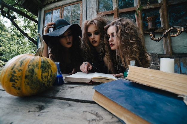 Konzentrierte jugendliche eine hexerei buch zu lesen Kostenlose Fotos
