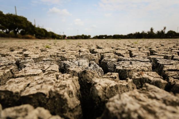 Konzept der globalen erwärmung, Premium Fotos