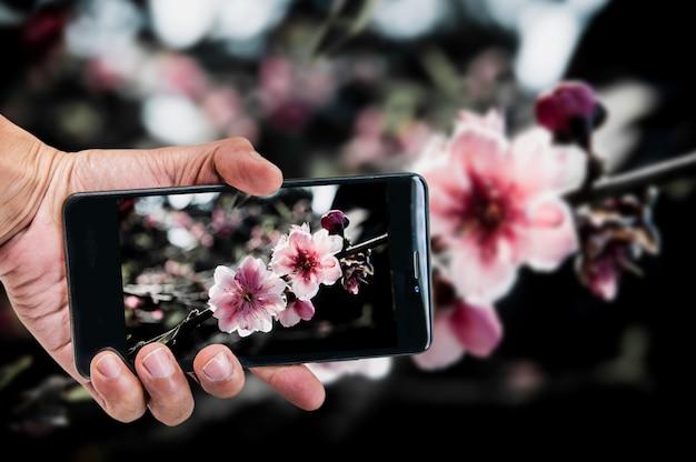 Konzept der mobilen fotografie. hand, die smartphone hält und foto macht Premium Fotos
