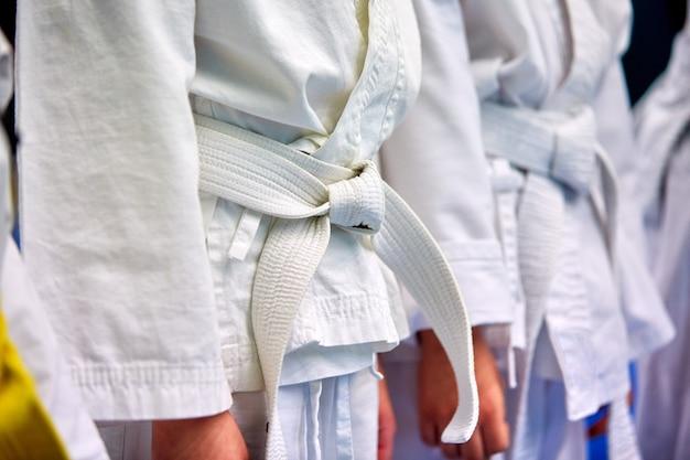 Konzept karate, kampfkunst. bau der studenten in der halle vor dem training. kimono, verschiedene gürtel, verschiedene trainingsstufen. nahansicht, Premium Fotos