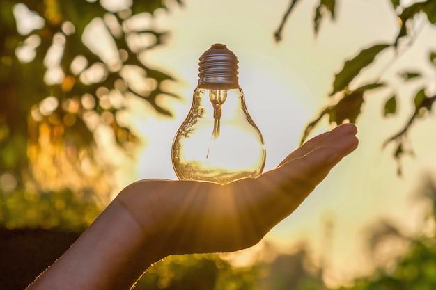 Konzeptenergieenergie von solar in der natur Premium Fotos