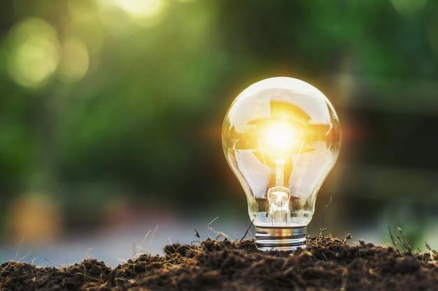 Konzeptidee, die glühlampe und sonnenlicht der energieeinsparung speichert Premium Fotos