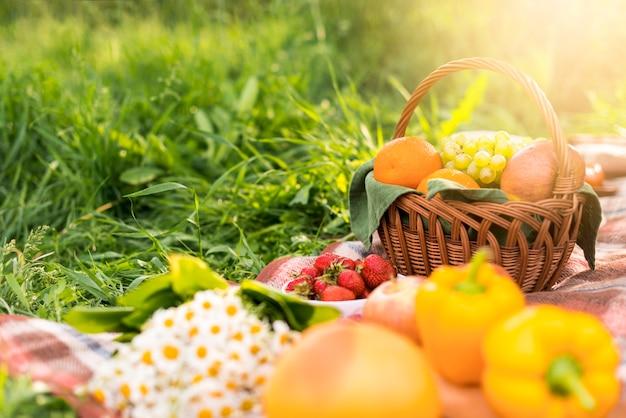 Korb mit früchten auf decke während des picknicks Kostenlose Fotos