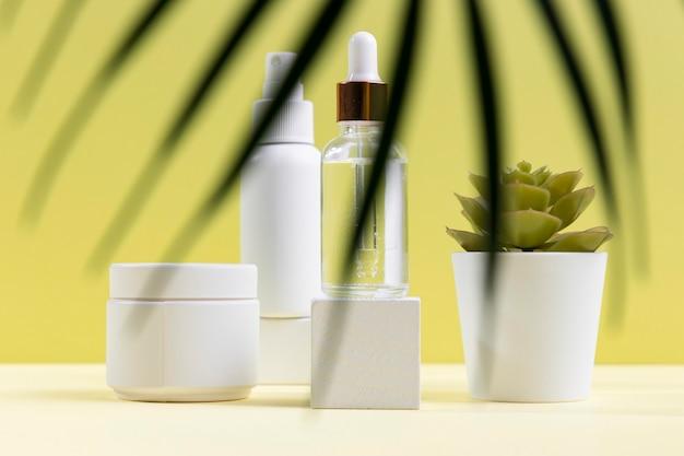 Kosmetikzusammensetzung mit topfpflanze Kostenlose Fotos
