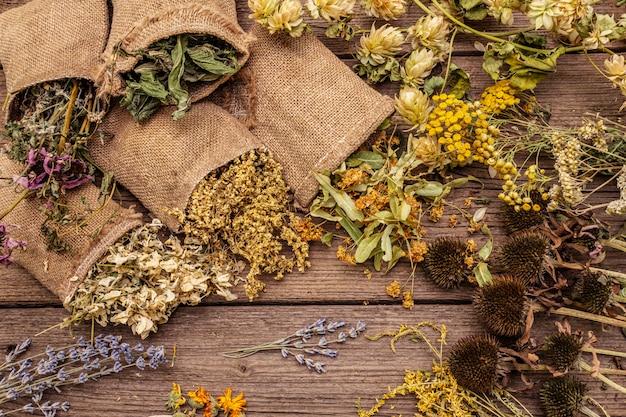 Kräutererntesammlung und blumensträuße von wildkräutern. alternative medizin. natürliche apotheke, self-care-konzept Premium Fotos