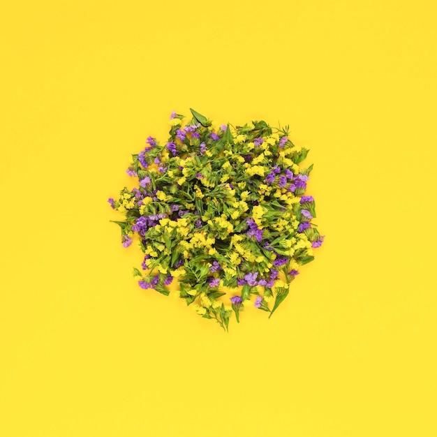 Kreisblumen auf gelbem hintergrund Kostenlose Fotos
