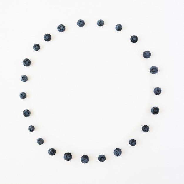 Kreisrahmen gemacht mit den blaubeeren lokalisiert auf weißem hintergrund Kostenlose Fotos