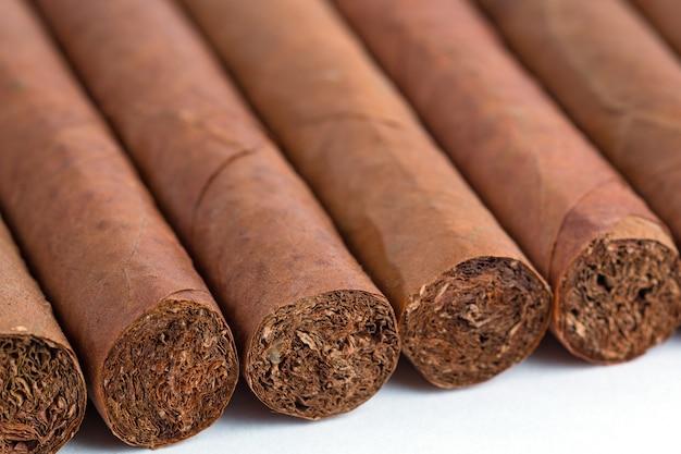 Kubanische zigarren isoliert Premium Fotos