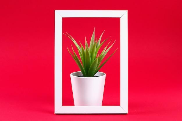 Künstliches grünes gras in einem weißen kleinen topf im weißen rahmen auf einem roten burgunder-hintergrund. Premium Fotos