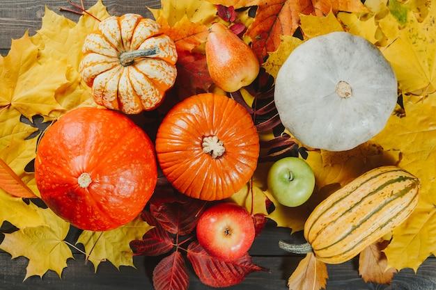 Kürbise mit reifen äpfeln und birne auf bunten ahornblättern. herbst saisonale bild. Premium Fotos