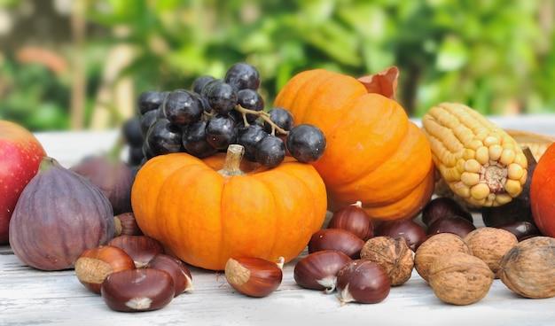 Kürbisse und früchte Premium Fotos