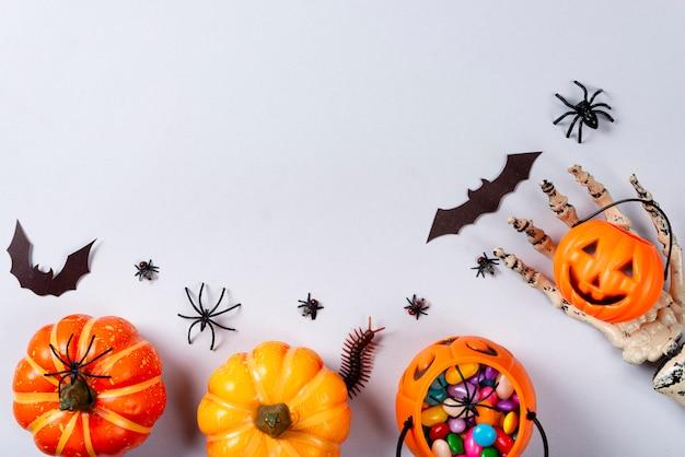 Kürbisse, web, fledermäuse, spinnen, tausendfüßler und fliegen auf grau. Premium Fotos