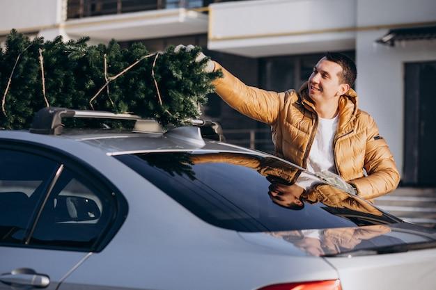 Laden-weihnachtsbaum des gutaussehenden mannes auf auto Kostenlose Fotos