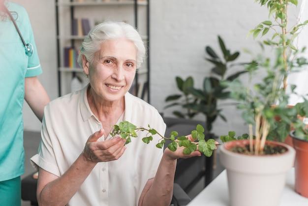Lächelnde ältere frau, die den efeu wächst im topf hält Kostenlose Fotos