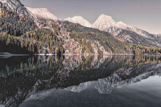 Landschaft der berge und bäume Kostenlose Fotos