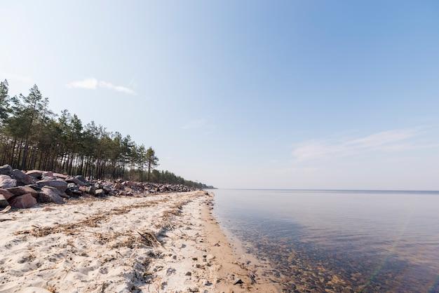 Landschaft des paradiesischen tropeninselstrandes mit bäumen gegen blauen himmel Kostenlose Fotos