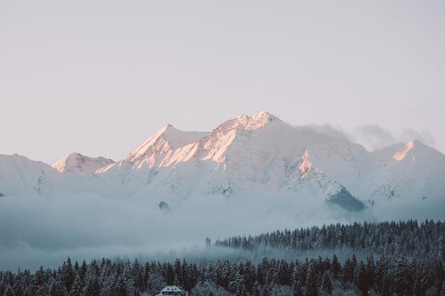 Landschaft von hügeln und wäldern im schnee unter dem sonnenlicht und einem bewölkten himmel bedeckt Kostenlose Fotos